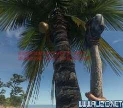 《荒岛求生》如何砍树 快速砍树方法解析攻略