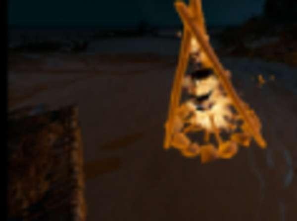 《荒岛求生》各种物品使用方法及资源分布一览